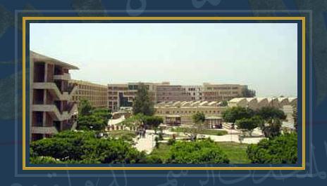 جامعة المنيا - صورة أرشيفية