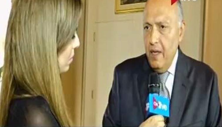 مصر فرضت على العالم احترام إرادة شعبها — فيديو. وزير الخارجية