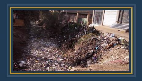 قرية منية محلة دمنة بين مشاكل الصرف الصحى وأوبئة القمامة