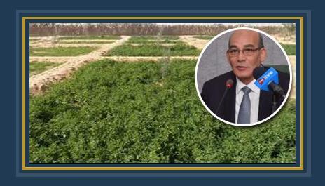 د. عبد المنعم البنا وزير الزراعية واستصلاح الأراضى