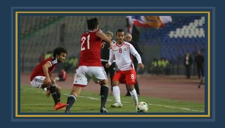 ودية مصر وتونس