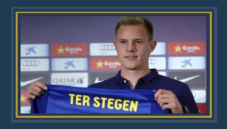 تير شتيجن