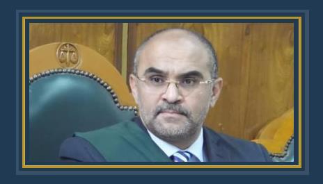 المستشار محمد الدمرداش العقالى نائب رئيس مجلس الدولة