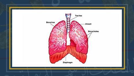 التهاب الجهاز التنفسى - أرشيفية
