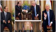 الرئيس الأمريكى دونالد ترامب والرئيس عبد الفتاح السيسى