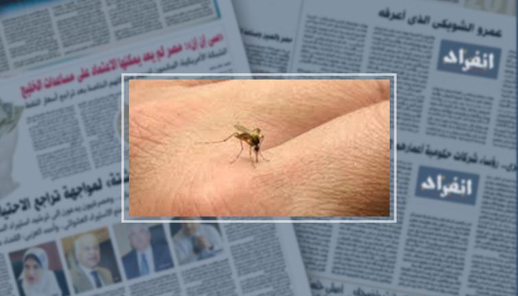 مفاجأة.. فيتامين ومبيد حشرات طبيعى يخلصانك من لدغات ...
